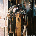 Saddle And Chaps by Judy Bottler