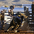 Saddle Bronc Riding Competition by Priscilla Burgers