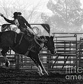 Saddle Bronc Riding by Priscilla Burgers