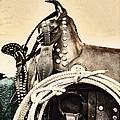 Saddle by Margie Hurwich