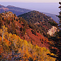 Saddle Mountain Autumn-sq by Tom Daniel
