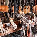 Saddle Up by Diane Wood
