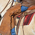 Saddle Up I by Gale Cochran-Smith