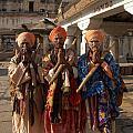Sadus Holy Men Of India by Carol Ailles