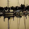 Safe Harbor by Venetta Archer