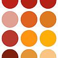 Saffron Colors by Frank Tschakert