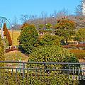 Sagamihara Asamizo Park 16h by Jay Mann