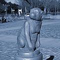 Sagamihara Asamizo Park 7e by Jay Mann