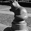 Sagamihara Asamizo Park 9a by Jay Mann