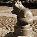 Sagamihara Asamizo Park 9b by Jay Mann