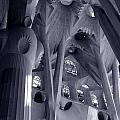 Sagrada Familia Vault by Michael Kirk