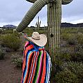 Saguaro Cactus The Visitor 1 by Bob Christopher