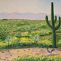 Saguaro Monument by Rich Civiok