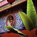 Saigon Temple by Shaun Higson