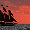 Key West Sunset Sail 5 by Bob Slitzan
