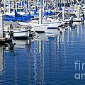 Sail Boats Docked In Marina by B Christopher