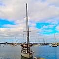Sail Me by Regina Avila