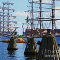 Sailabration Baltimore by Marcus Dagan