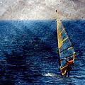 Sailboarding W Metal by Anita Burgermeister