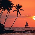 Sailboat At Sunset by Bob Abraham - Printscapes