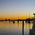 Sailboat Bay by Steve Lipson
