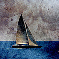 Sailboat Bird W Metal by Anita Burgermeister