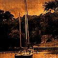 Sailboat By The Bridge by Cedric Hampton