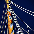Sailboat Lines by Karol Livote