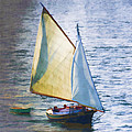 Sailboat Off Marthas Vineyard Massachusetts by Carol Leigh