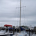 Sailboat by Robert Floyd