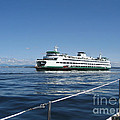 Sailboat Sees Ferryboat by Kym Backland