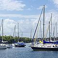 Sailboat Series 05 by Carlos Diaz