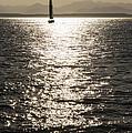 Sailboat Silhouette by Lee Kirchhevel