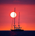 Sailboat Sunset by Venetia Featherstone-Witty