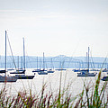 Sailboats At Rest by Bill Cannon