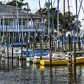 Sailboats At The Fairhope Yacht Club by Michael Thomas