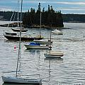 Sailboats In Seal Harbor   by Helene Guertin