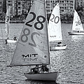 Sailboats On The Charles River II by Clarence Holmes