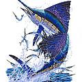 Sailfish by Carey Chen