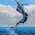 Sailfish Dance Off0054 by Carey Chen