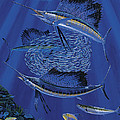 Sailfish Round Up Off0060 by Carey Chen