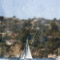 Sailing Along The Shore by Margie Hurwich