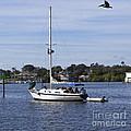 Sailing At Ballard Park On The Eau Gallie River In Melbourne Flo by Allan  Hughes