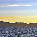 Sailing At Sunset - Lake Tahoe by John Waclo