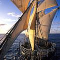 Sailing Boats Kruzenshtern by Anonymous