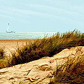 Sailing By Sand Dune by Elaine Plesser
