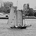 Sailing Free In Black And White by Rob Hans
