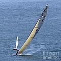 Sailing Fun by Scott Cameron