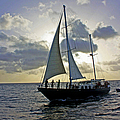 Sailing In Aruba by Suzanne Stout