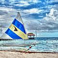 Sailing In Cancun by William Havle